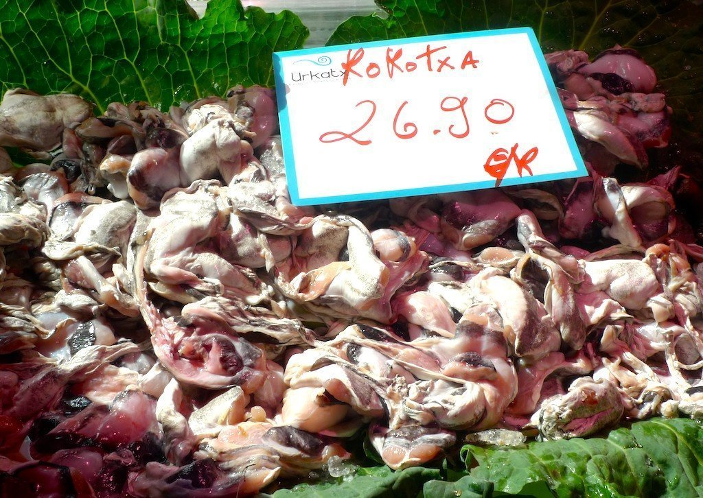 kokotxas or hake glands