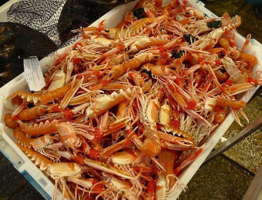 Galicia _Langostinos or crayfish