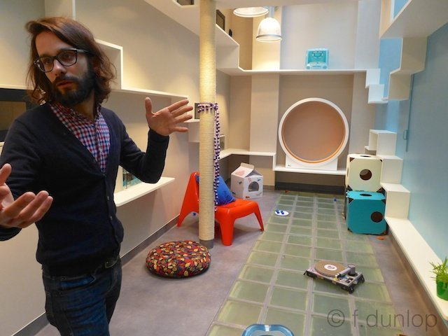 Gauthier+cat+hotel+playroom