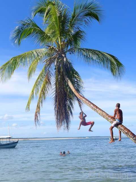 Brazil_Boipeba_boys_palmtree