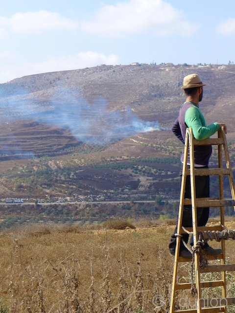 West_Bank_settler_fires_Yitzhar