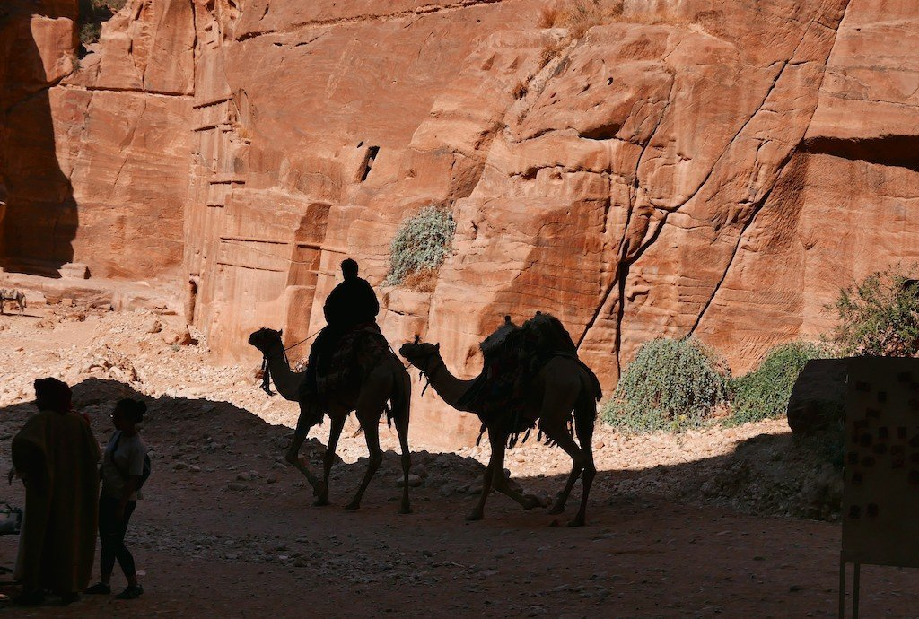 Petra - silhouettes of camels in the Siq
