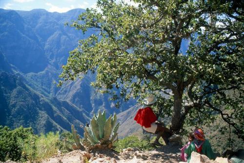 Copper Canyon, Chihuahua